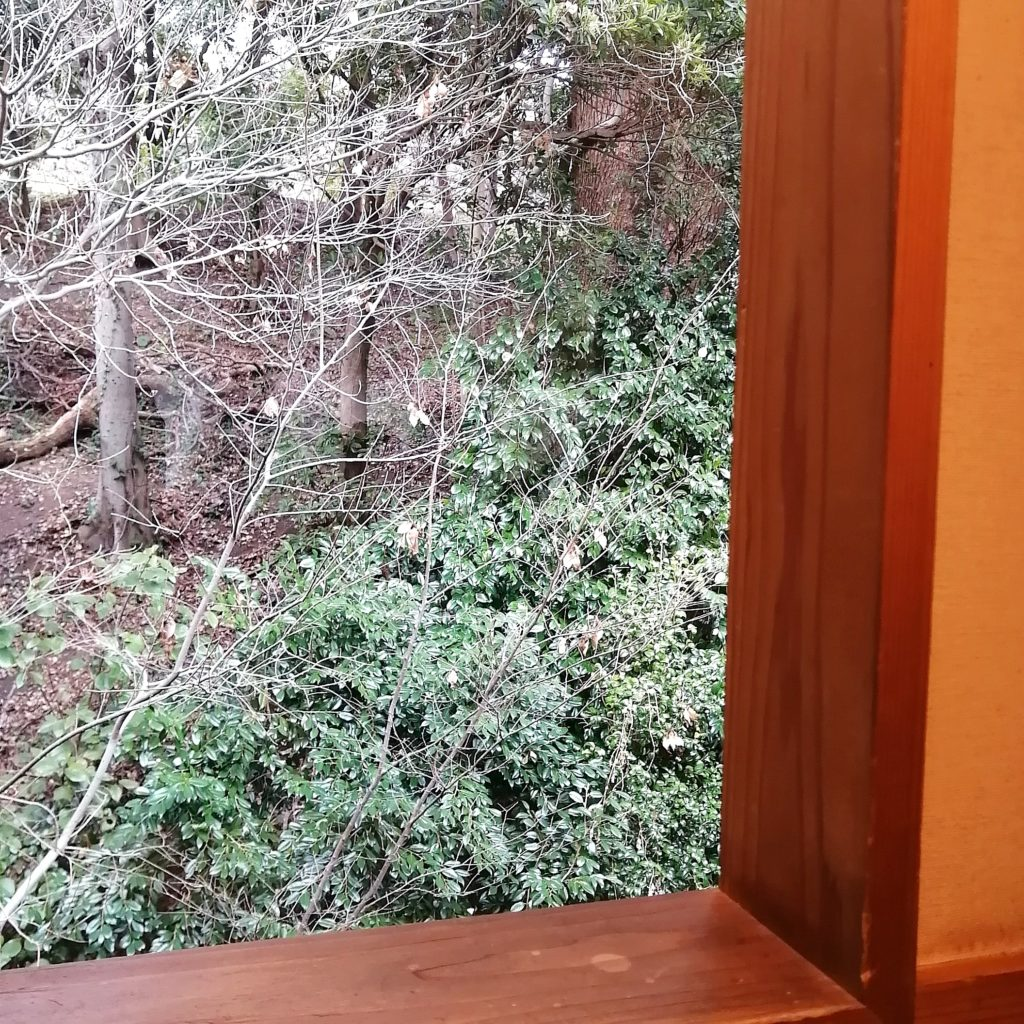 福岡コーヒー「珈琲美美」2階から見える風景