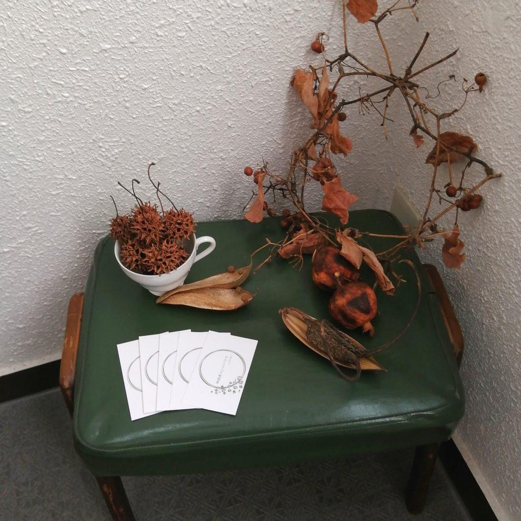 高円寺紅茶「サルトリイバラ喫茶室」サルトリイバラの植物
