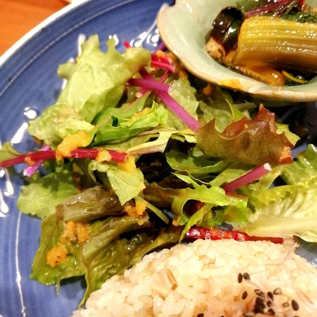 高円寺定食「Bear's Cafe Forest」日替わりポークハンバーグプレート・有機野菜